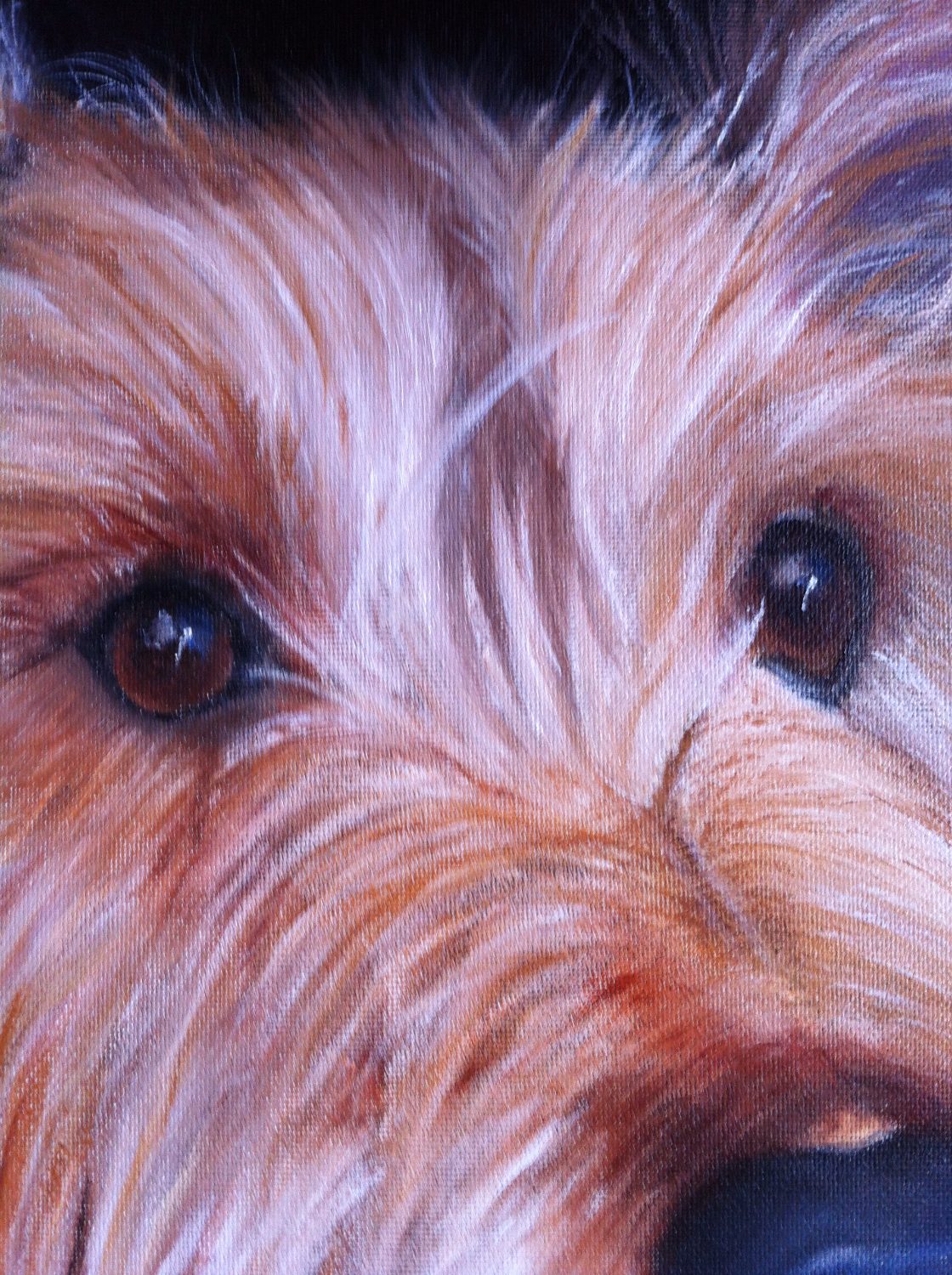 Oil Pet Portraits Detail