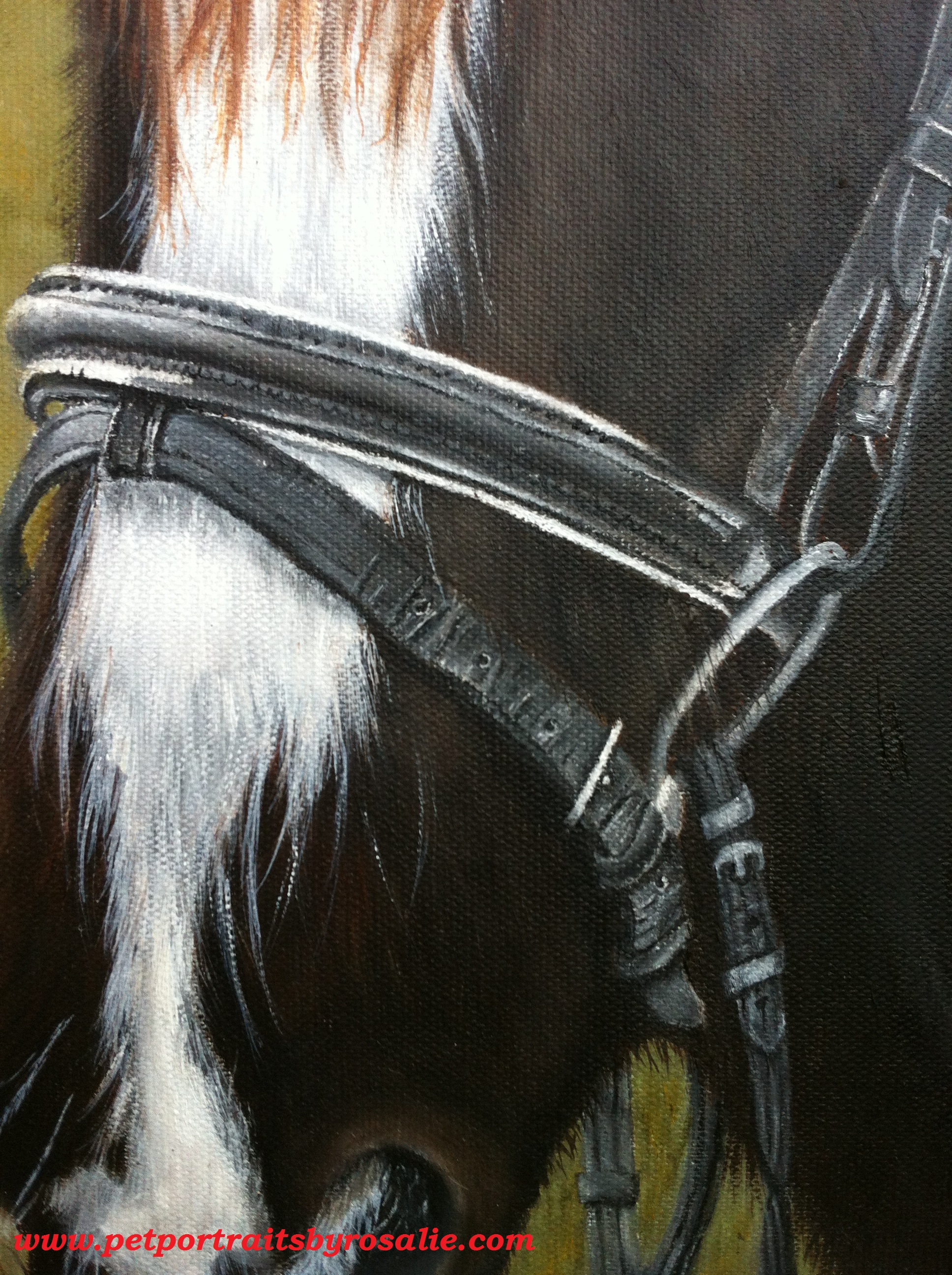 Horse Portrait in Oils detail