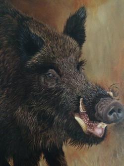 wild boar oil painting