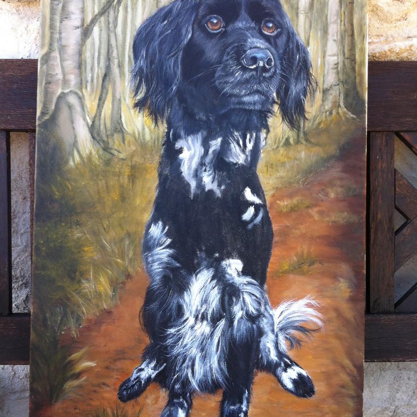 Dog Oil Portrait work in progress