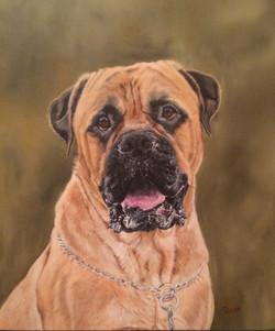 Tyson - Bullmastiff Oil Painting