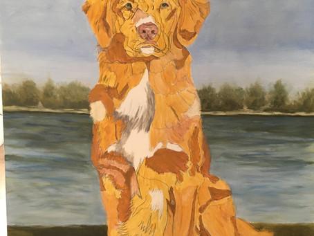 Pet portrait in oils of Toller