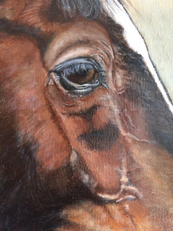 Horse oil painting up close