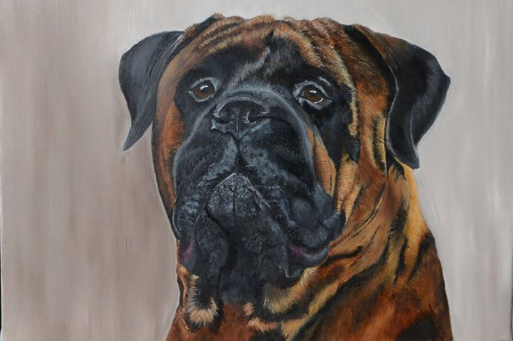 Dog Oil Portrait Bull Mastiff