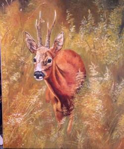 deer oil painting