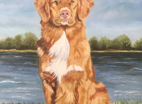 Pet Portrait of Toller.....off the easel!!