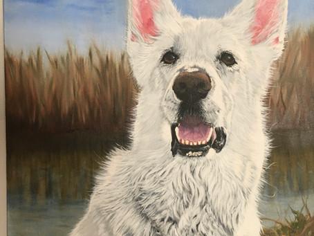 DuRai's pet portrait in oils off the easel!!!