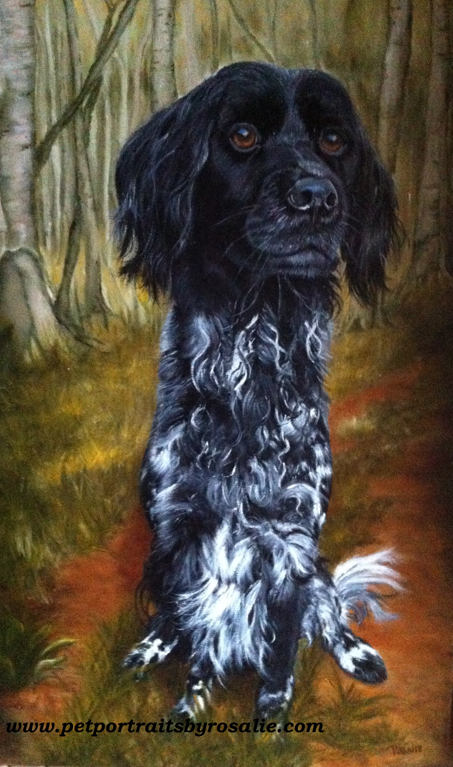 Dog Pet Portrait Oils