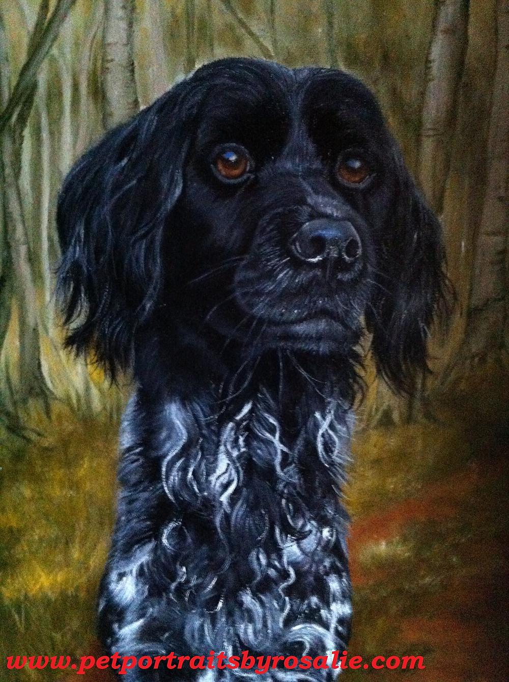 Dog Oil Portrait Munsterlander