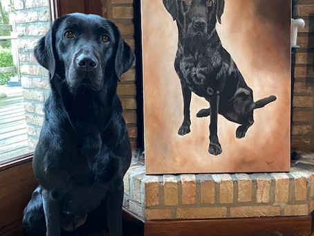 The Pet portrait in oils of Tipper