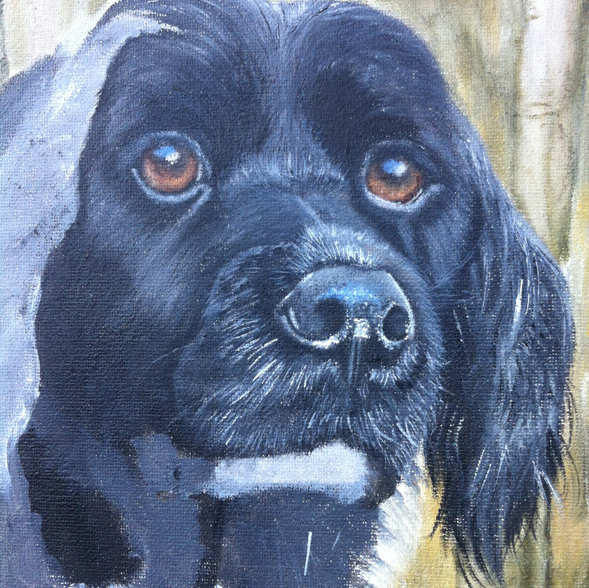 Dog Oil Portrait detail w.i.p.