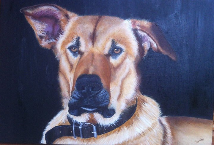 Pet Portraits In Oils