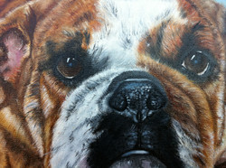 Oil paintings of Dogs in Detail