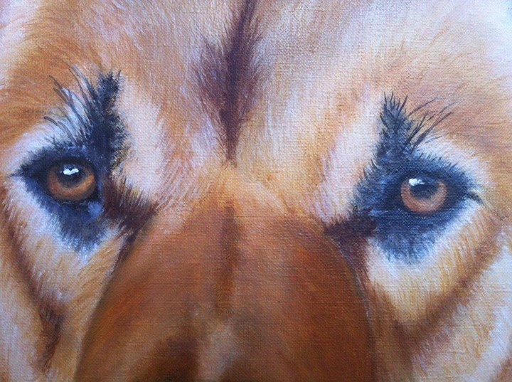 Pet Portraits in Oils Detail