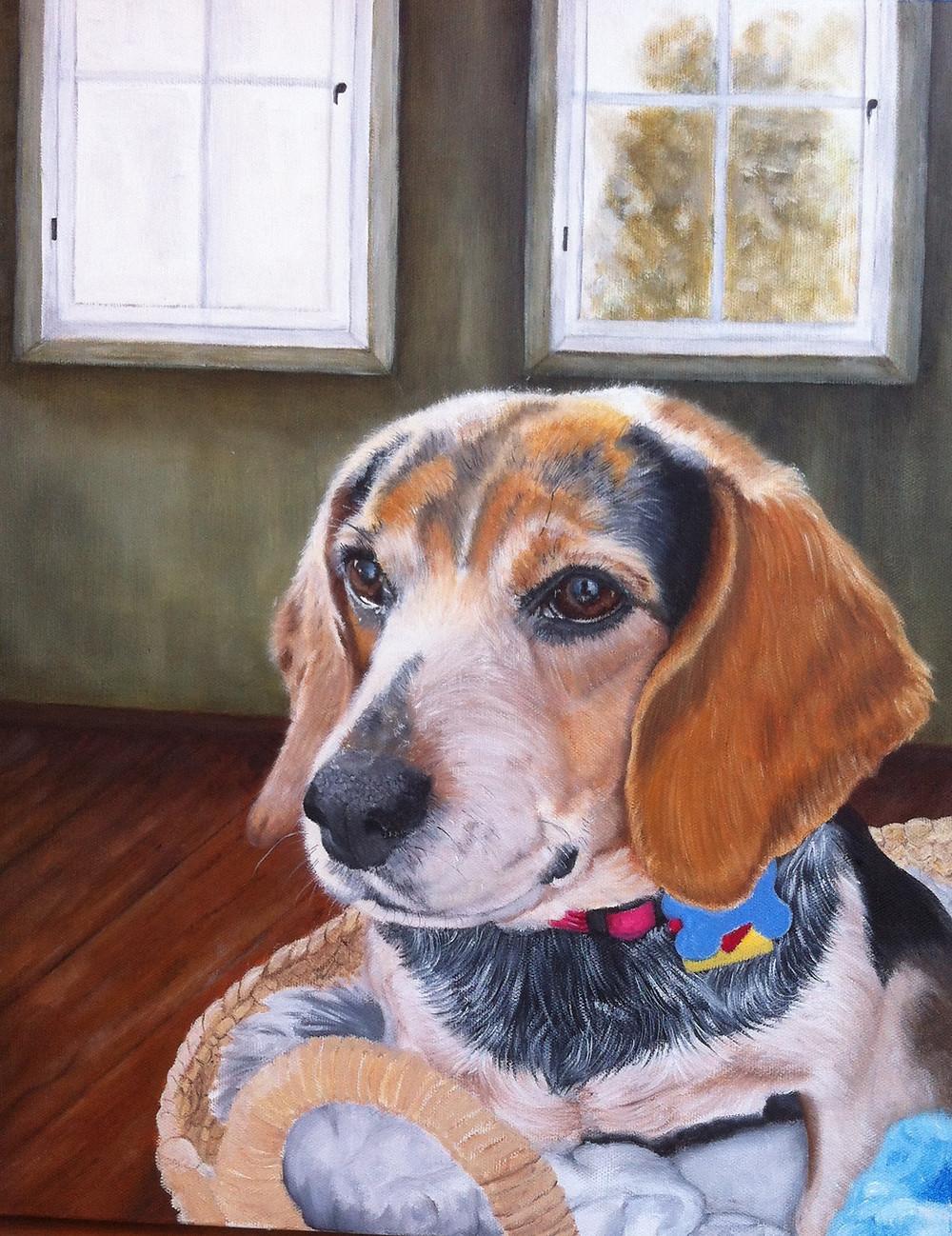 dog pet portrait in oils