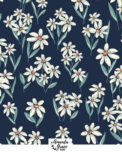 IG-main_daisies