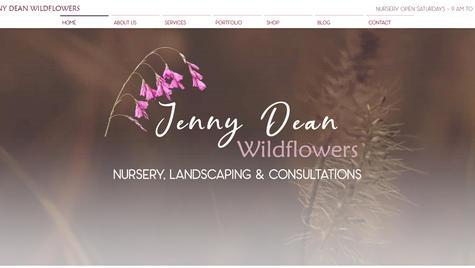 Jenny-Dean-Wildflowers