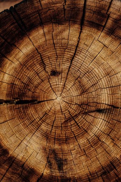 Misty Mountain Timberworks Wood