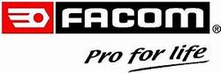 logo facom - Copie (2)