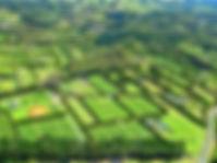 laudo de avalição de imóveis rurais