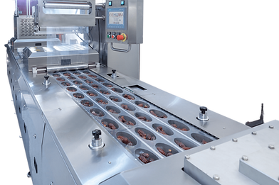 form fill seal packaging machine.png