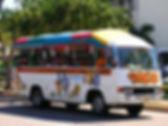 Pre2010_tourtub_tu_3_l.jpg