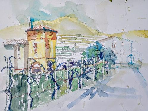 Weingut in Venezien