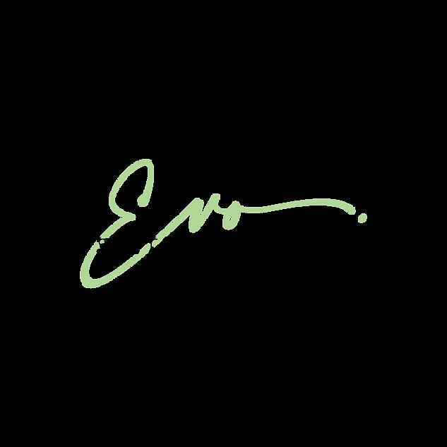 Suite Evolution Logo png.png