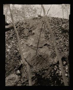 Boulder and Lichen