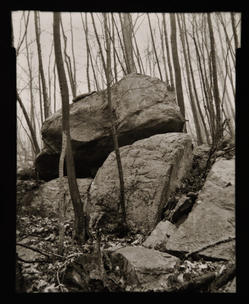 Boulders and Bare Trees