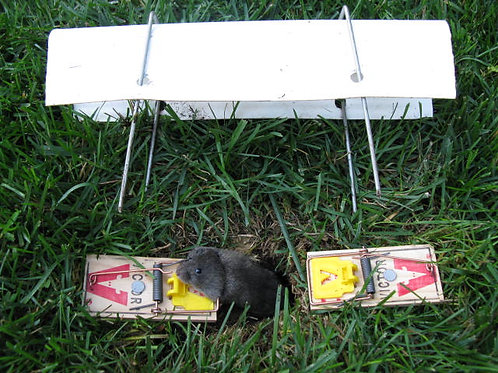 Vole Trapping kits
