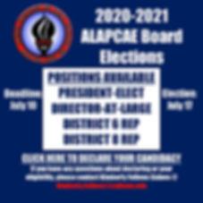 2020 Elections Flyer.jpg