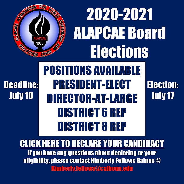 2020 Elections Flyer.jpg
