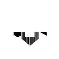 small trans logo.png