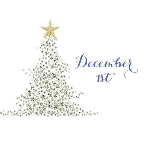 December 1 - Mini Session Deposit