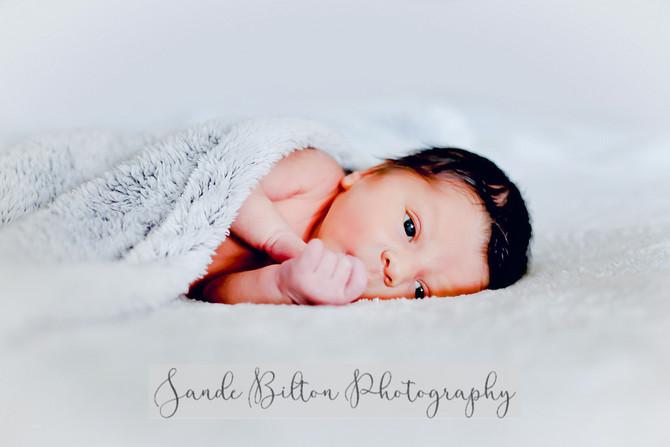 Jaxson's Newborn Photo Shoot