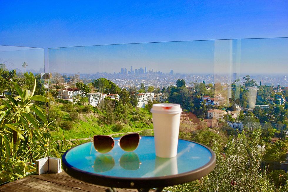 Downtown LA View.jpg