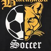 Blackhawk Soccer
