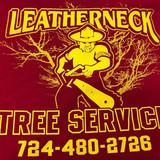 Leatherneck Tree Service
