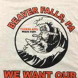 Beaver Falls Pool