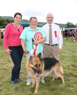 Winner, The Large Dog Class