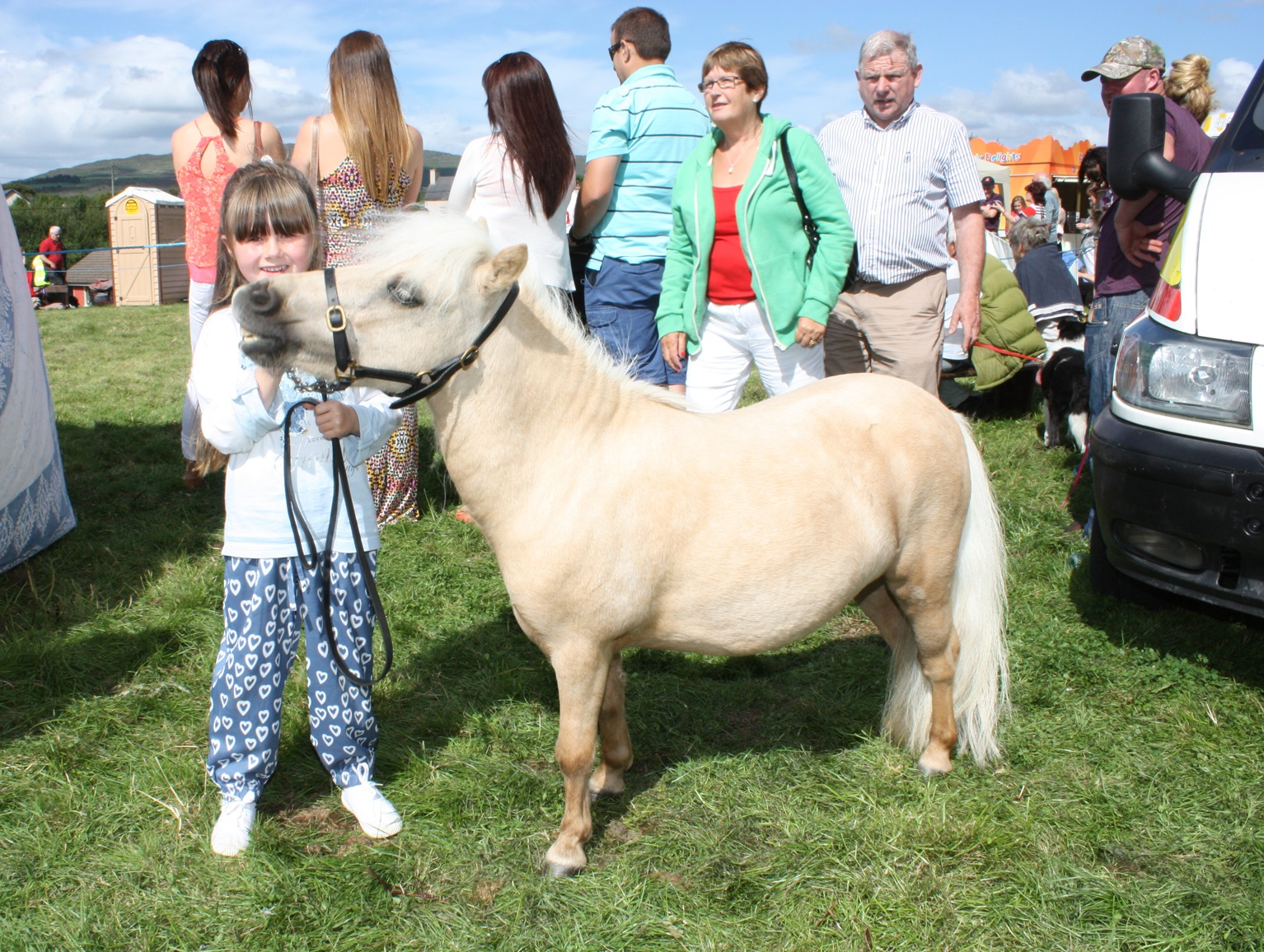 the Kilgarvan Show19.jpg