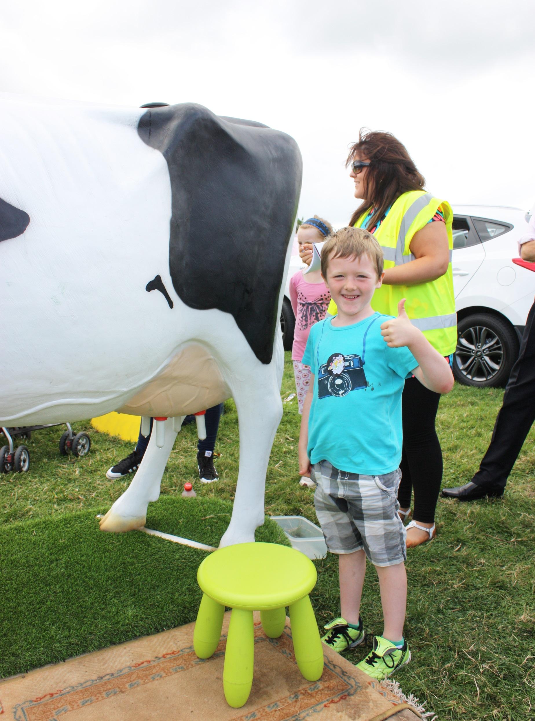 Kilgarvan Show Cow Milking