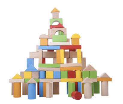 100 pieces Wooden Building Blocks