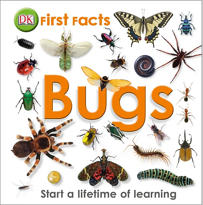 First Facts: Bugs