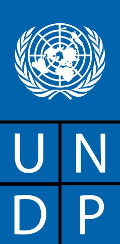 238px-UNDP_logo.svg.png