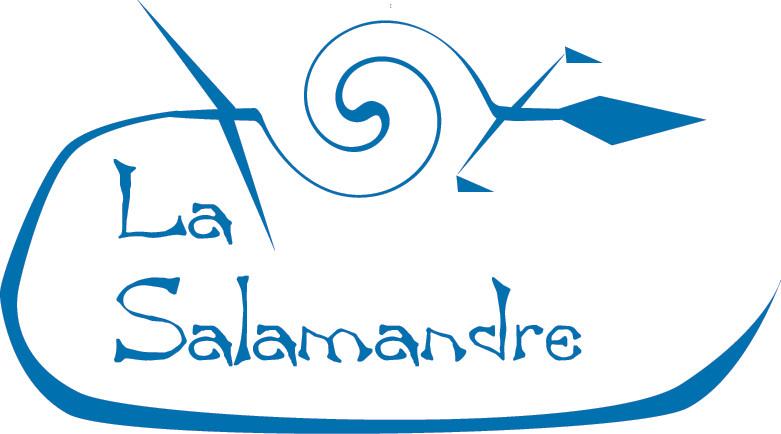 debut logo.2.jpg