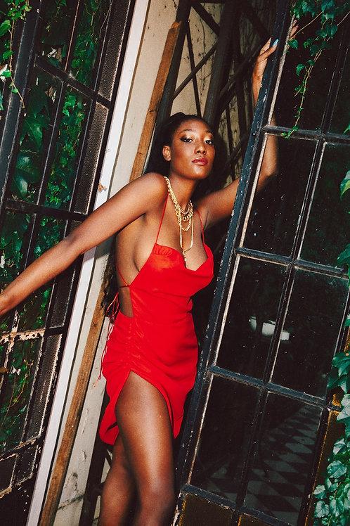 The Naomi 𝑅𝑒𝑑 𝐹𝑒𝑣𝑒𝑟