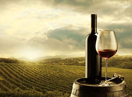 wine-Investment.jpg