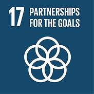 SDG 17 Partnership for the goals